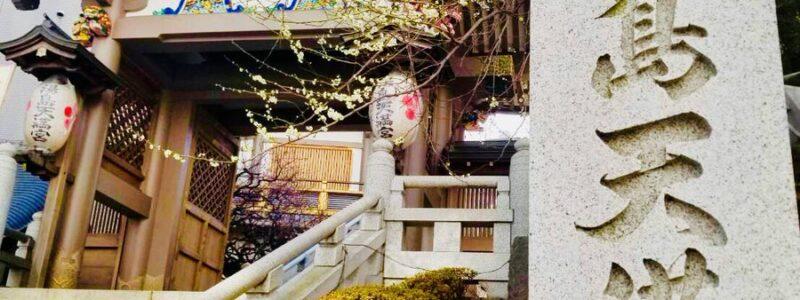 神社de献血 「湯島天満宮」(文京区)